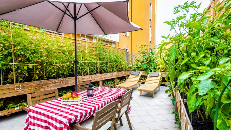 Hotel-Trilussa-Palace-Rome-vegetable-garden-0446-HDR